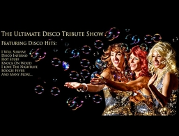 70s Disco Tribute Show